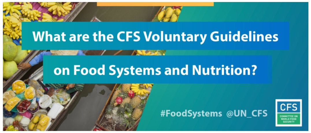 The CFS Voluntary Guidelines On Food Systems and Nutrition (VGFSyN)