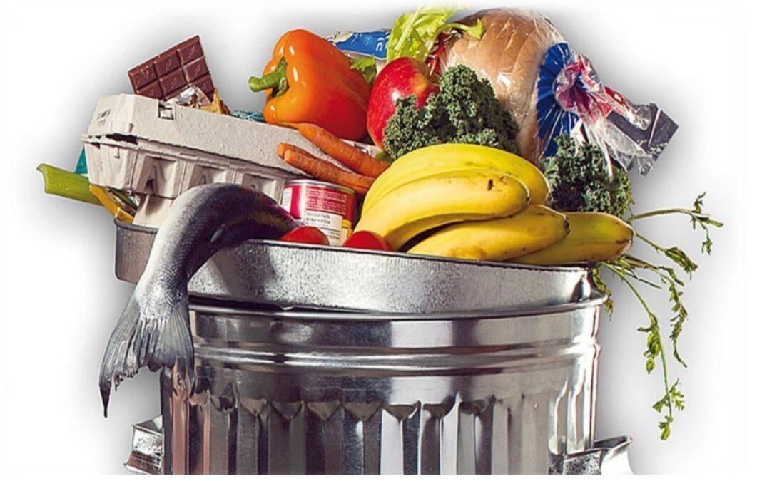 Digitalised enterprises reduce food loss up to 20%