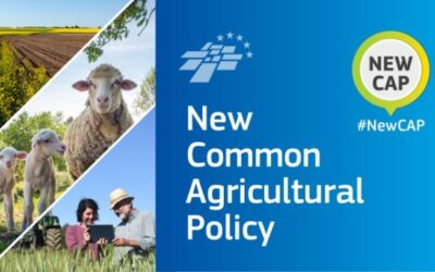 New Common Agricultural Policy (CAP)